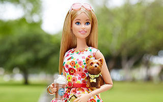 The Barbie Look Park Pretty Doll